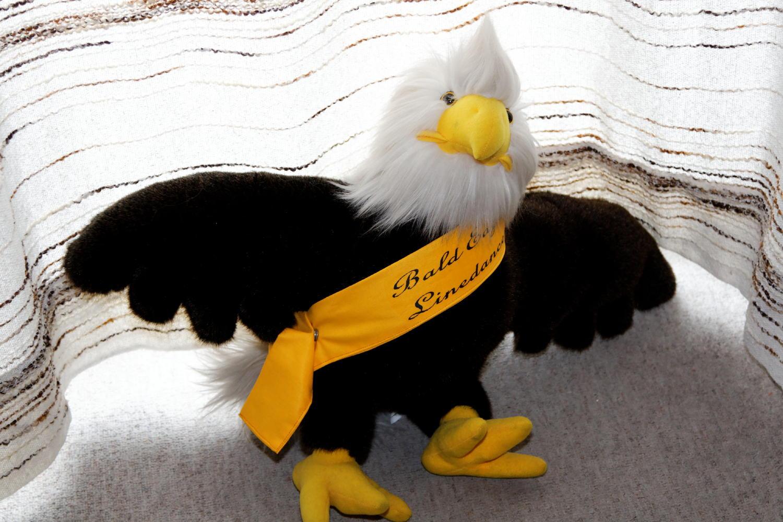 bald eagle linedance